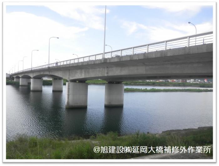 延岡大橋 橋全景