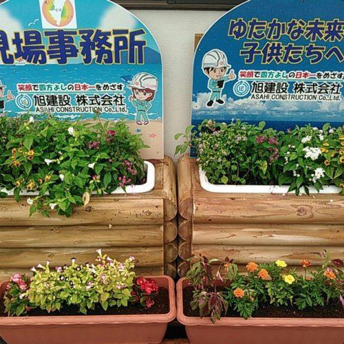 みやざき花いっぱいプロジェクト2020~工事現場に花を飾ろう~